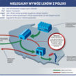 Gdzie są leki, których brakuje w Polsce?