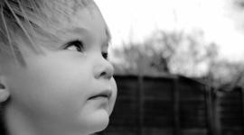 Prawie 10 miliardów złotych zaległych alimentów Problemy społeczne, BIZNES - Dłużnicy alimentacyjni w Polsce są winni swoim dzieciom 9,7 miliarda złotych. W bazie danych KRD znajduje się już ponad 300 tys. rodziców, którzy nie płacą na swoje dzieci. Ich średnie zadłużenie przekracza 32 tys. złotych.