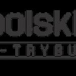 Polski HR – A-trybut okrzyknięty Lodołamaczem!